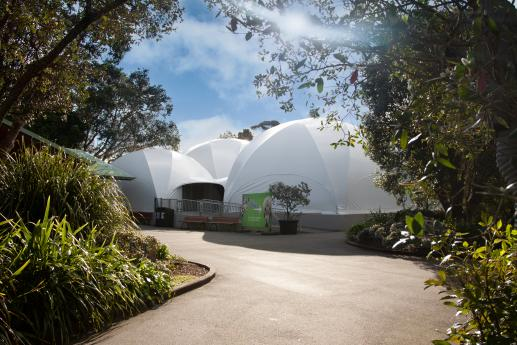 Auckland Zoo - The Domes